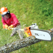 Telescopic Pruning Chainsaw – 30cm Bar
